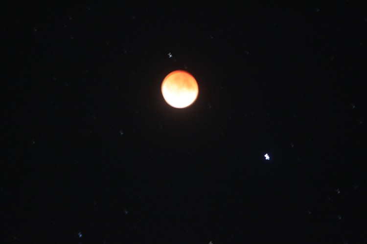 2014_2014_04_15_Eclipse of the moon